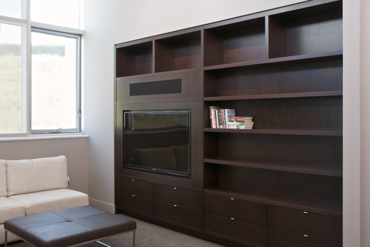 TV-bookcase