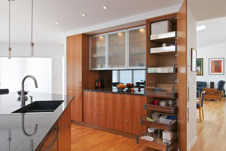 stainless-roll-out-pantry