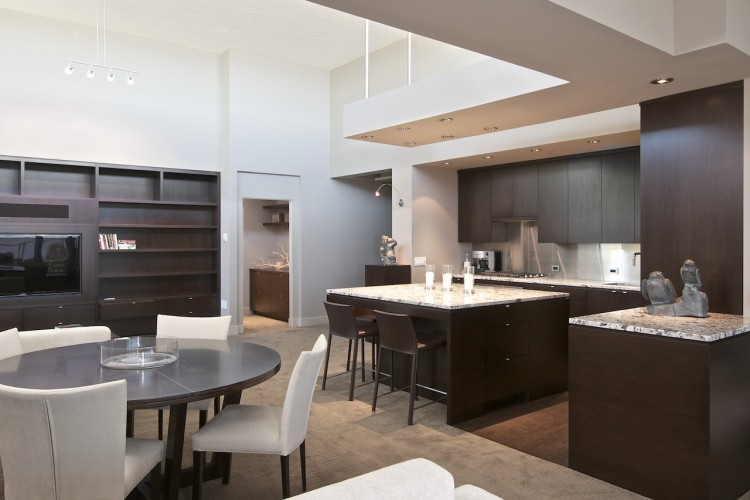 wenge-kitchen-and-living-room
